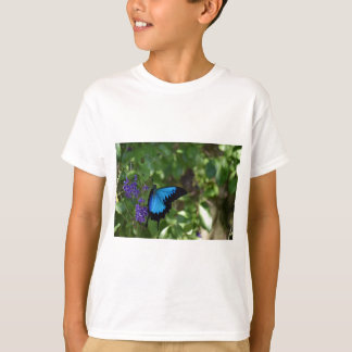 BLAUER SCHMETTERLING QUEENSLAND AUSTRALIEN ULYSSES T-Shirt