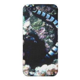 BLAUER STREIFEN iPHONE Schutzhülle Fürs iPhone 5