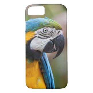 Blauer und gelber Macaw iPhone 7 Kasten iPhone 8/7 Hülle