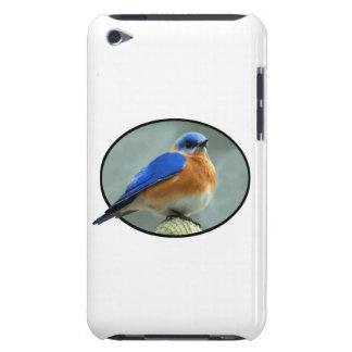 Blauer Vogel im ovalen Rahmen iPod Case-Mate Hüllen