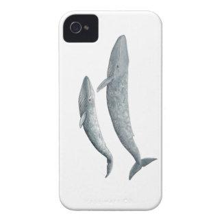 Blauer Wal iPhone 4 Hüllen