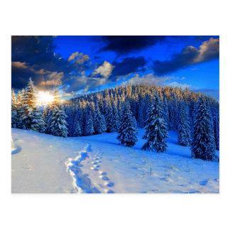 Blauer Winter-Sonnenaufgang Postkarte