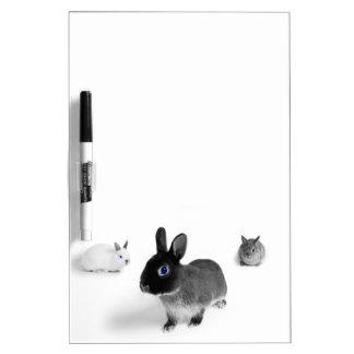 Blaues Augen-Häschen Whiteboard