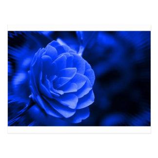 blaues camelia postkarte