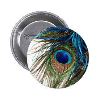 Blaues Grün-lila exotische Pfau-Feder Runder Button 5,1 Cm
