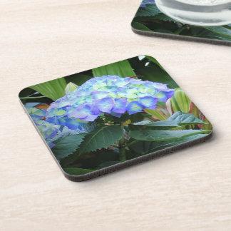 Blaues Hydrangea-Blumen-Foto Untersetzer