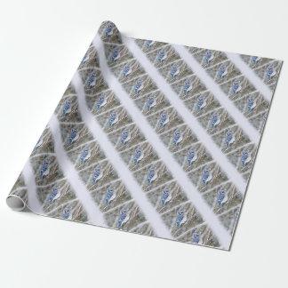 Blaues Jay im Schnee-Weihnachtsfeiertag Geschenkpapier