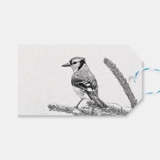 Blaues Jay in der Winter-Skizze Geschenkanhänger