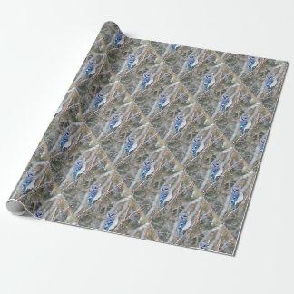 Blaues Jay in einem Schneesturm Geschenkpapier