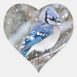 Blaues Jay in einem Schneesturm Herz-Aufkleber