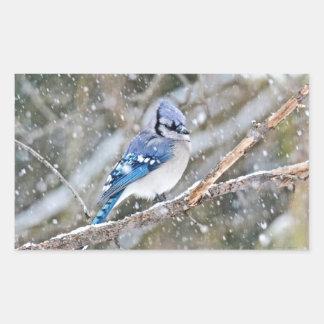Blaues Jay in einem Schneesturm Rechteckiger Aufkleber