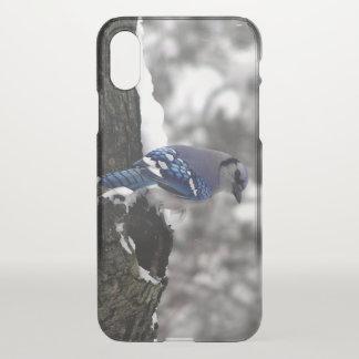 Blaues Jay iPhone X Hülle