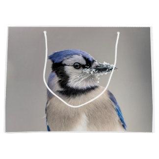 Blaues Jay mit Schnee auf seinem Schnabel Große Geschenktüte