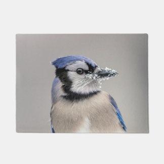 Blaues Jay mit Schnee auf seinem Schnabel Türmatte