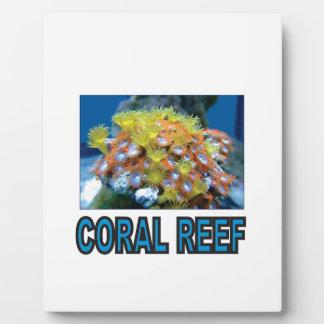 blaues Korallenriff ja Fotoplatte