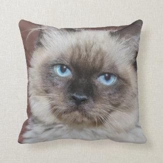 Blaues mit Augen Katze Throwkissen Kissen