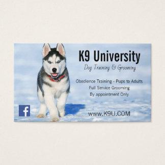 Blaues mit Augen sibirischer Visitenkarte