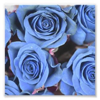 Blaues Rosen-Blumenmuster Fotodruck