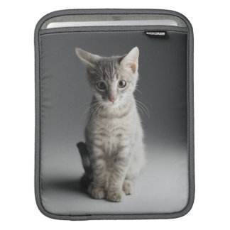 Blaues Tabby-Kätzchen iPad Sleeve