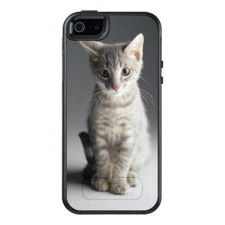 Blaues Tabby-Kätzchen OtterBox iPhone 5/5s/SE Hülle