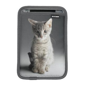 Blaues Tabby-Kätzchen Sleeve Für iPad Mini