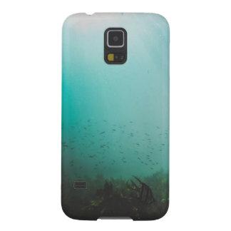 blaues Unterwassermeer Samsung Galaxy S5 Hülle