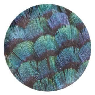Blaugrüner Fasanfederentwurf Melaminteller