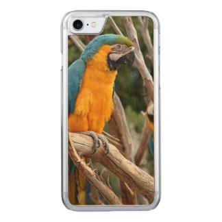 Blauund GoldMacaw Carved iPhone 8/7 Hülle