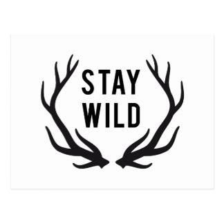 bleiben Sie, Textentwurf mit den Rotwildgeweihen Postkarte