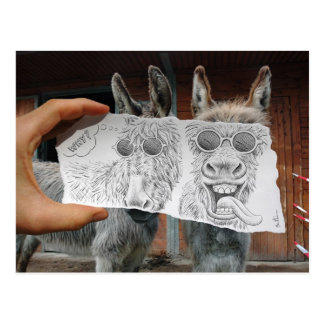 Bleistift gegen Kamera - verrückte Esel Postkarten