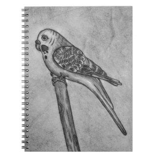 Bleistift-Zeichnen von Parakeet sitzend auf Notizbuch