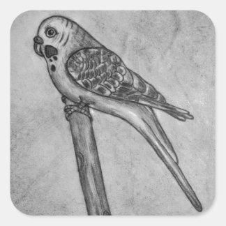 Bleistift-Zeichnen von Parakeet sitzend auf Quadratischer Aufkleber