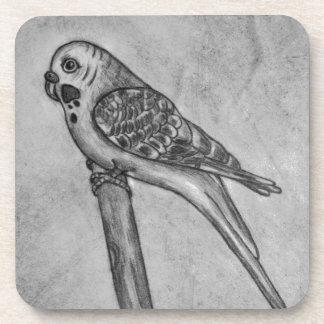 Bleistift-Zeichnen von Parakeet sitzend auf Untersetzer