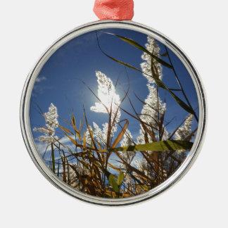 Blendungs-Sonnenlicht-Thema Rundes Silberfarbenes Ornament