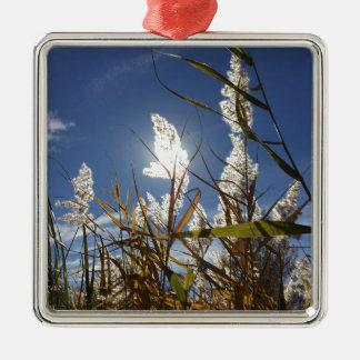 Blendungs-Sonnenlicht-Thema Silbernes Ornament