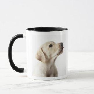 Blonder Labrador-Welpe, der heraus Zunge haftet Tasse