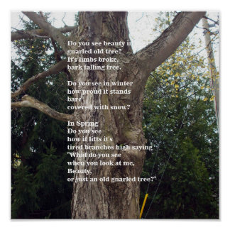 Bloßer Baum-Gedicht-fot Tag des Baums Poster