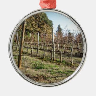 Bloßes Weinbergfeld im Winter. Toskana, Italien Silbernes Ornament