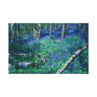 Bluebell-Holz England Leinwanddruck