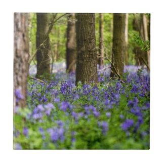 Bluebell-Holz Keramikfliese