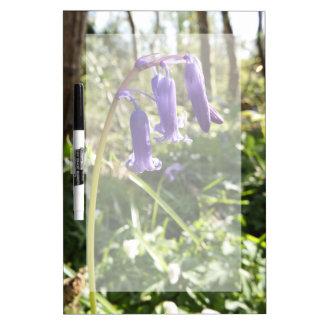Bluebells trocknen Löschen-Brett Memoboard