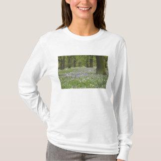 Bluebells und Eichen im Frühjahr, wenig Hagley T-Shirt