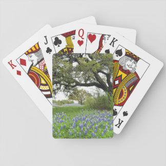 Bluebonnet-Spielkarten Spielkarten