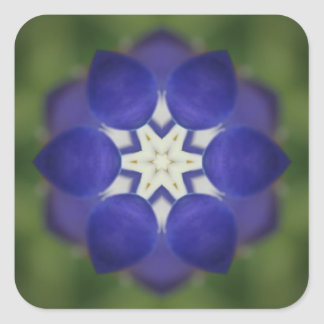 Bluebonnet-Symmetrie Quadratischer Aufkleber