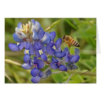 Bluebonnet und Biene Notecard Karte