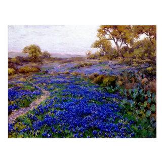 Bluebonnets an der Dämmerung, nördlich von San Postkarte