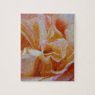 Blühen der Rose Puzzle
