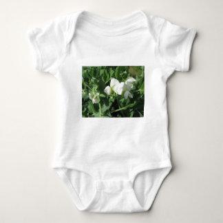 Blühende Erbsen-Pflanze auf einem Gebiet. Toskana, Baby Strampler