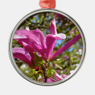 Blühende lila Magnolie Silbernes Ornament