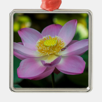 Blühende Lotos-Blume, Indonesien Silbernes Ornament
